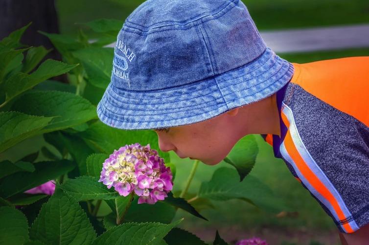 Tips To Get Kids Gardening